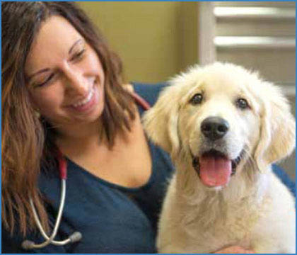 Click Here To Buy Pet Health Products